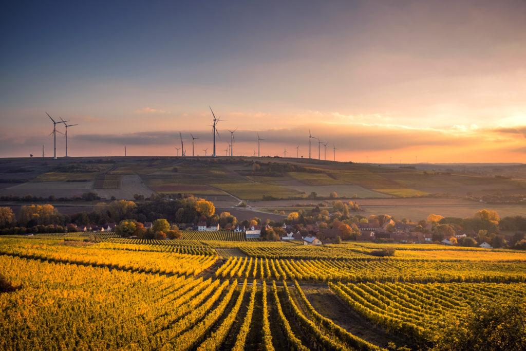 REenergising Australian business: the corporate race to 100% renewable energy